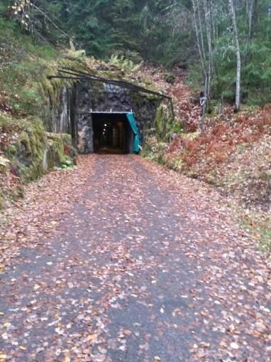 Tunnlar (1)